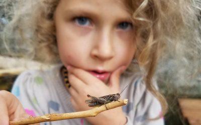 Vaiko dvasinis gyvenimas